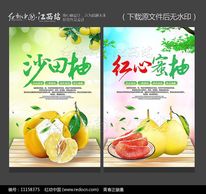创意沙田柚红心蜜柚宣传海报图片