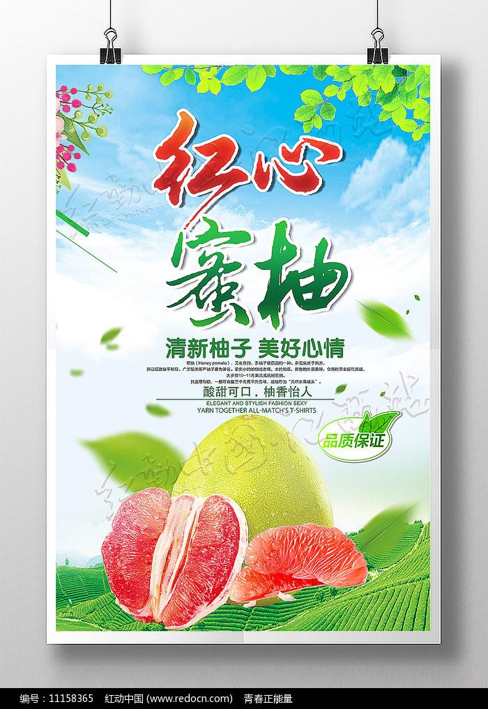 红心蜜柚新鲜水果海报图片