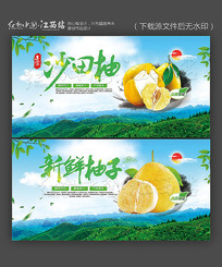 新鲜柚子沙田柚宣传海报设计