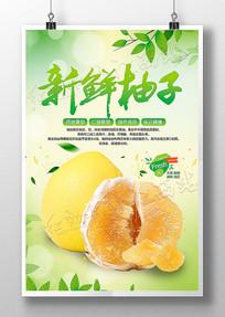 新鲜柚子宣传海报设计