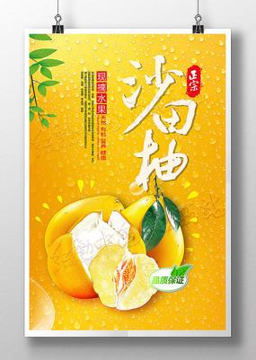 正宗沙田柚现摘柚子海报