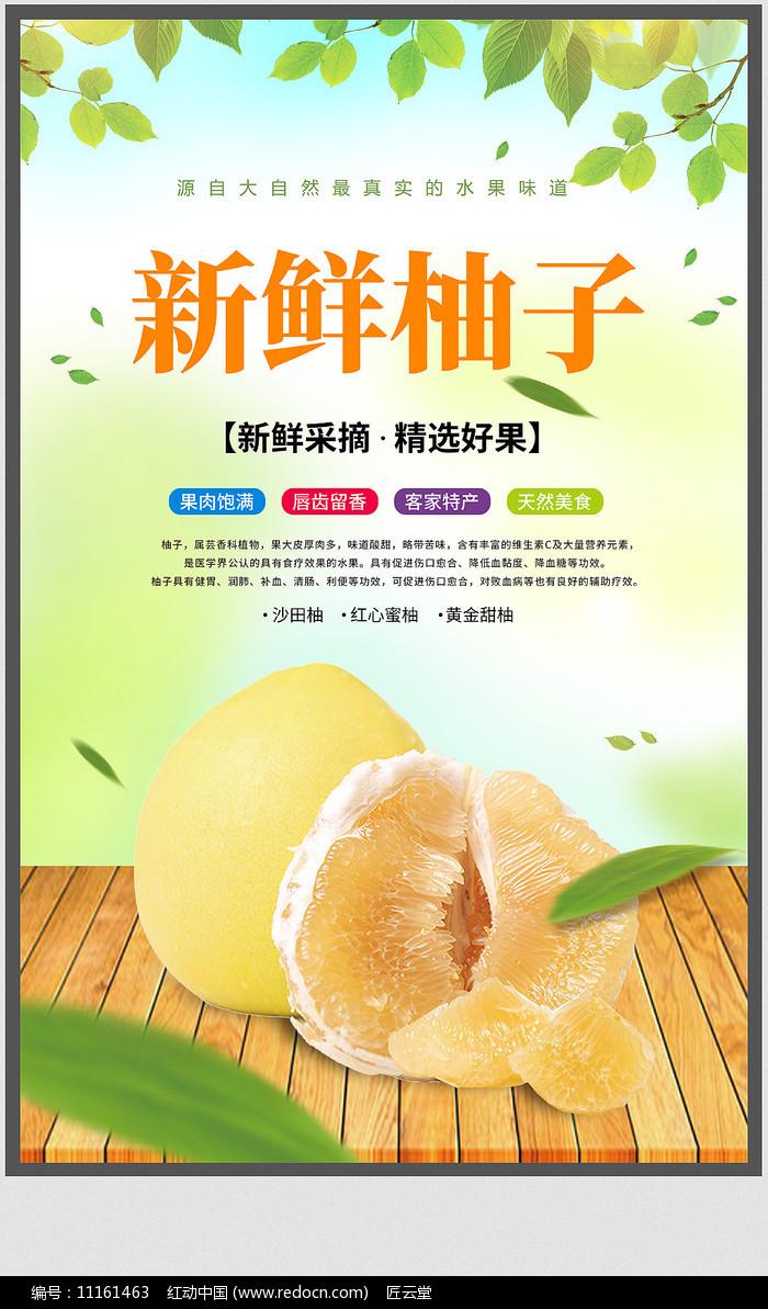 柚子宣传海报设计图片