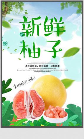 柚子宣传海报设计
