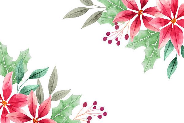 矢量手绘圣诞花装饰画