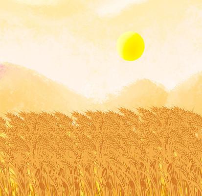 原创手绘写实秋季麦田丰收场景插画