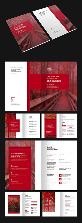 红色枫叶商务画册设计