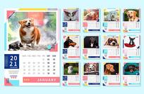 2021宠物台历设计模板