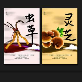 冬虫夏草灵芝中药海报设计