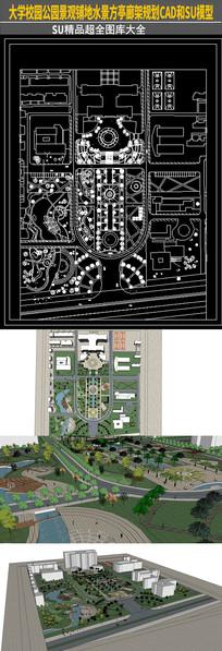 大学校园公园景观铺地水景方亭廊架规划