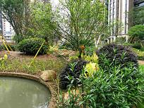 水边自然式植物组团