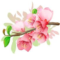 原创粉色一枝花