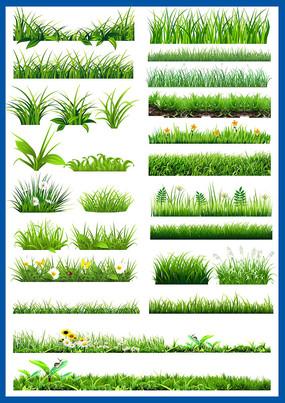 花草园林绿化景观植物绿色小花小草素材