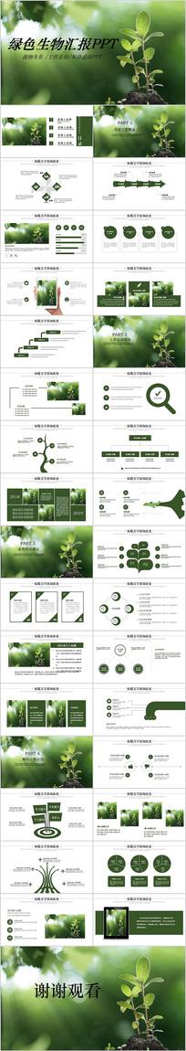 绿色植物发芽植物生长敬畏生命PPT