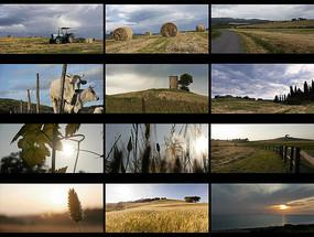 拖拉機農場莊園風景視頻素材