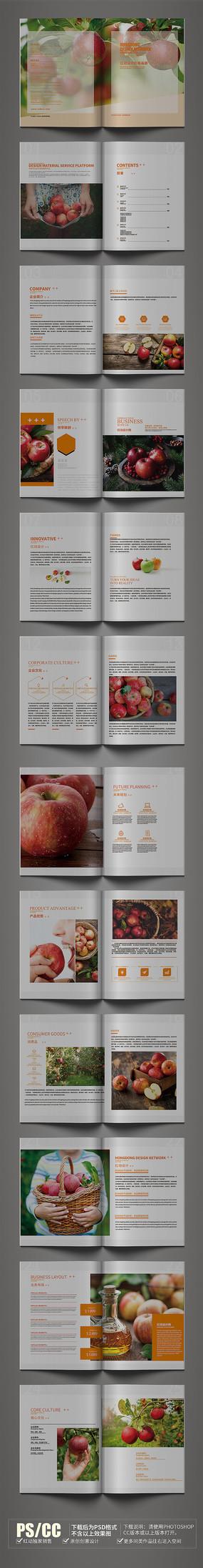 原创简约苹果画册设计