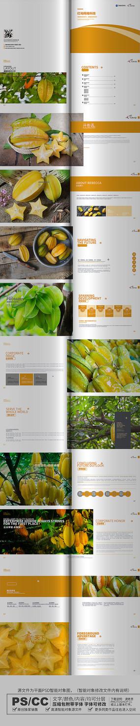 黄色杨桃画册设计模板