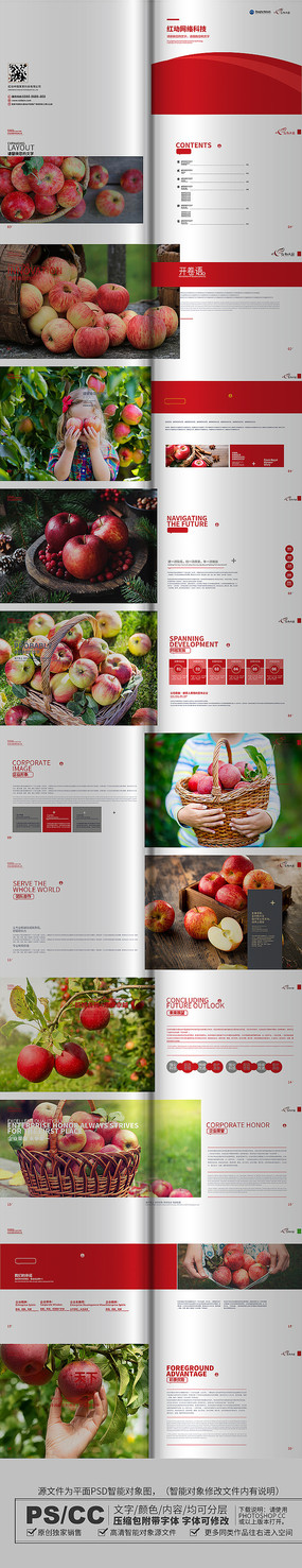 简约大气苹果画册设计