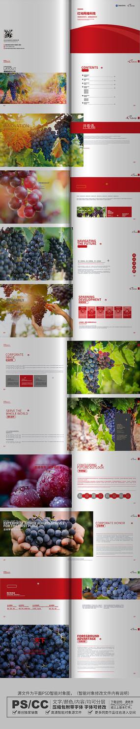 葡萄画册设计模板