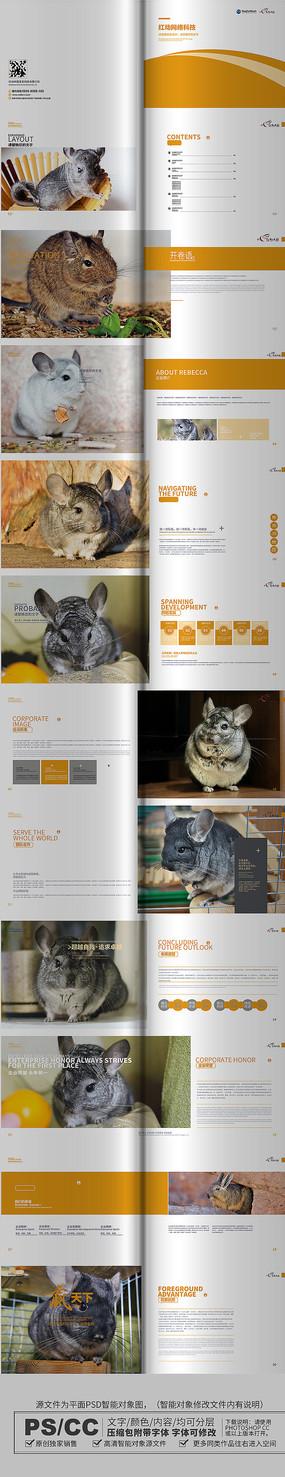 简约时尚龙猫画册设计