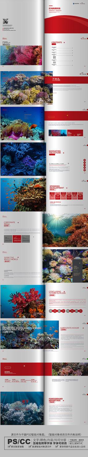 蓝色精致珊瑚画册设计模板