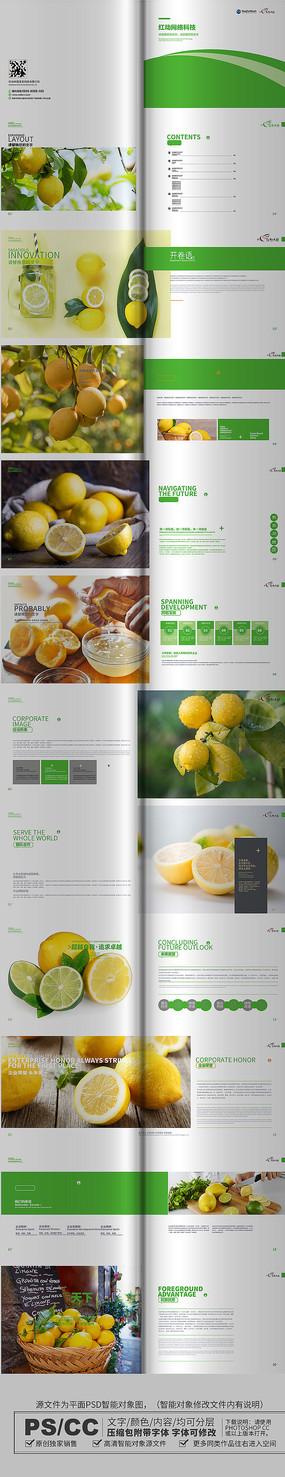 原创简约柠檬画册设计