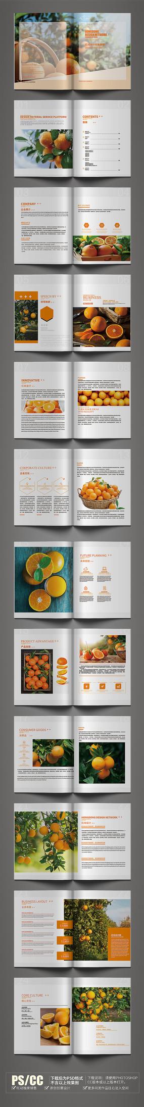 原創時尚臍橙畫冊設計