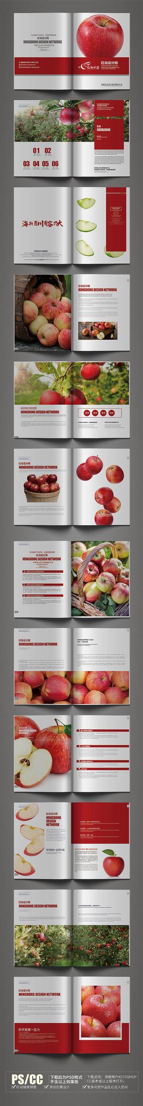 红色简约苹果画册设计模板