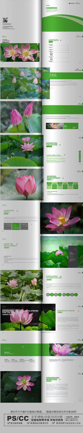 绿色简约荷花画册设计