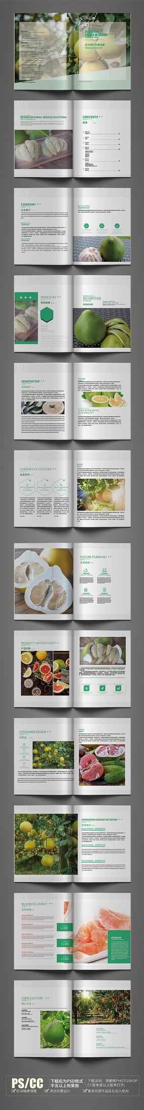 简约原创柚子画册模板设计