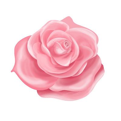 情人节装饰玫瑰花