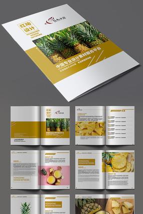 高端菠萝产品画册模板设计