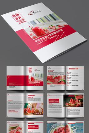 时尚大气西瓜产品画册模板设计