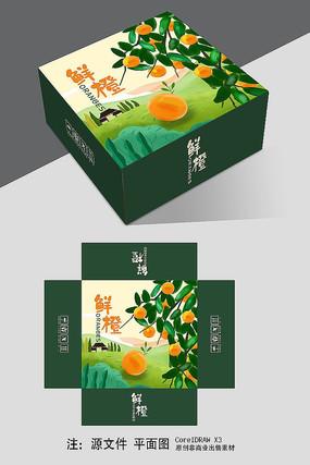 原創鮮橙禮盒包裝設計