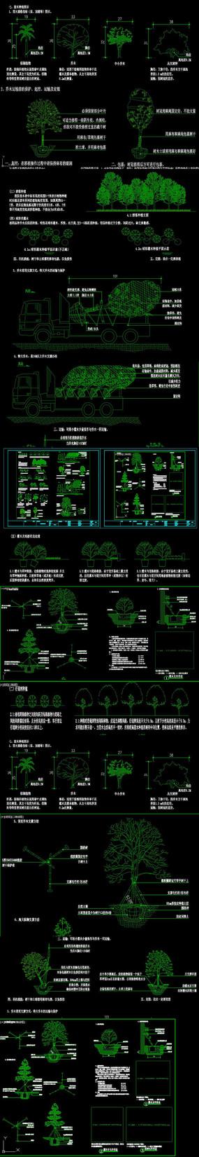植物图例设计说明CAD图库