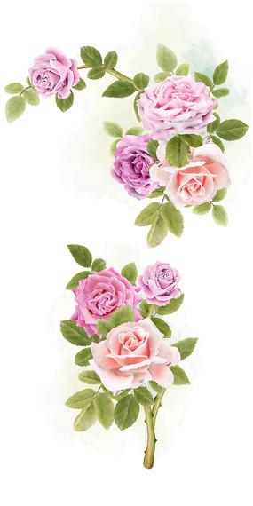 矢量水彩花朵素材