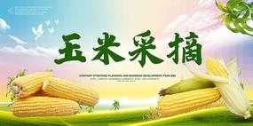 玉米采摘海报设计