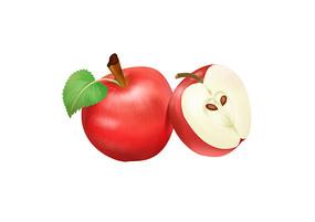 原创手绘卡通写实风格熟透的苹果插画
