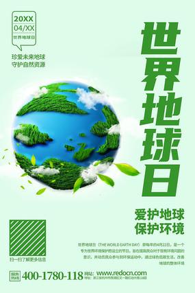 简约精致世界地球日公益活动宣传海报设计