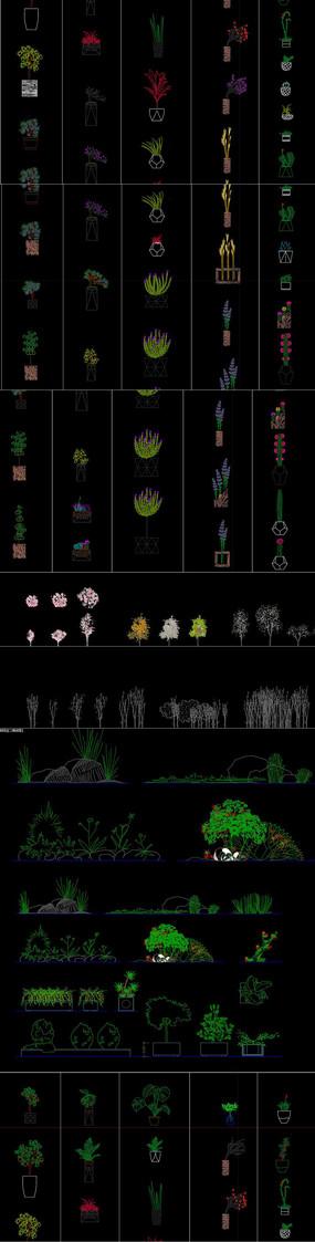 2021植物景觀CAD圖庫
