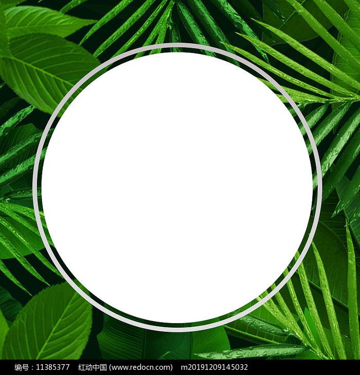 绿色化妆品电商展示背景图片