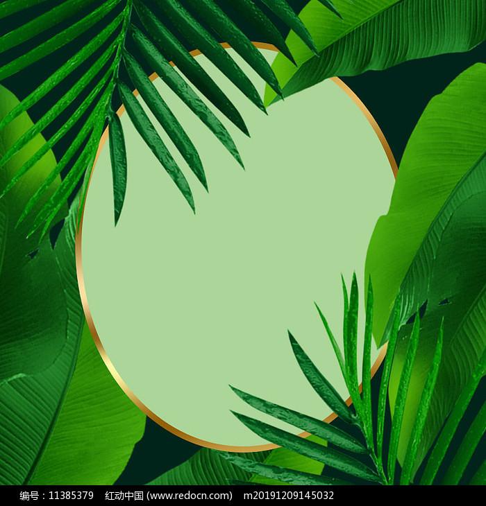 绿色树叶植物健康美妆产品背景图片