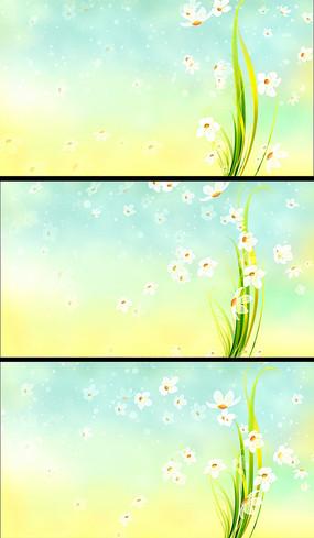小清新花朵飘落动态视频背景