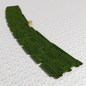 现代植物迷宫模型