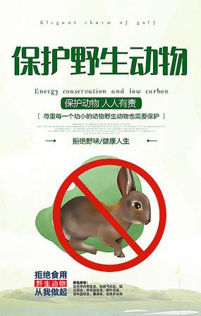 简约独家保护野生动物公益海报设计