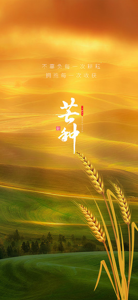 芒种二十四传统节气海报