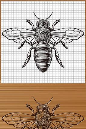 蜜蜂矢量图案
