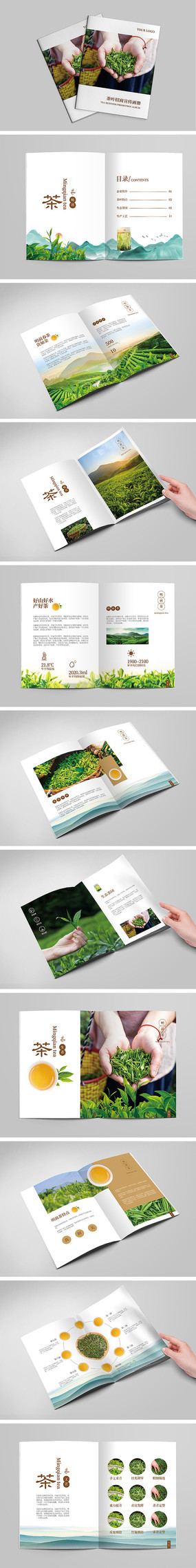 绿茶宣传画册