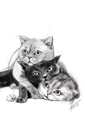 三只猫手绘插画