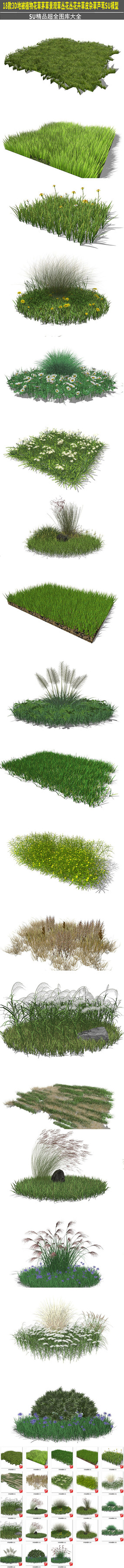 地被植物草皮花草模型