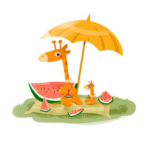 夏日吃西瓜乘凉解暑的长颈鹿